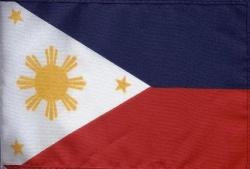 Pambansang Watawat ng Pilipinas (Larawan mula sa (philippinetraveler pluspng.com). - Pambansang Sagisag Ng Pilipinas PNG
