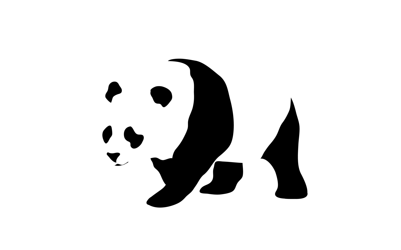 Animal - Panda Wallpaper - Panda HD PNG