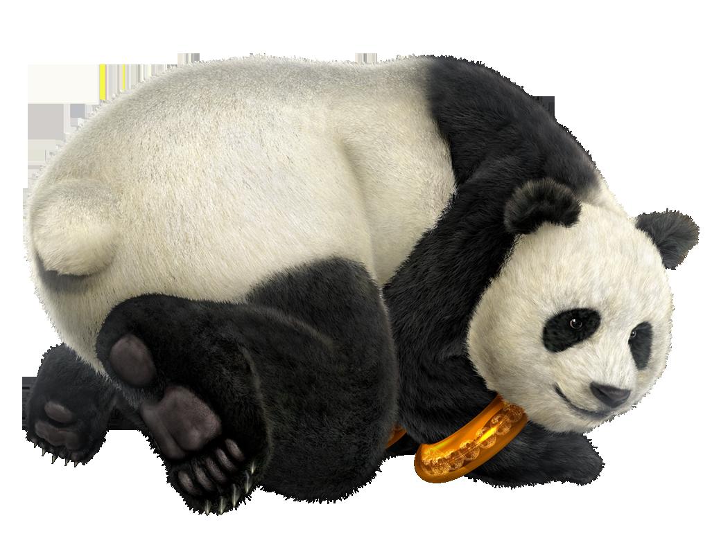 Panda HD PNG - 118912