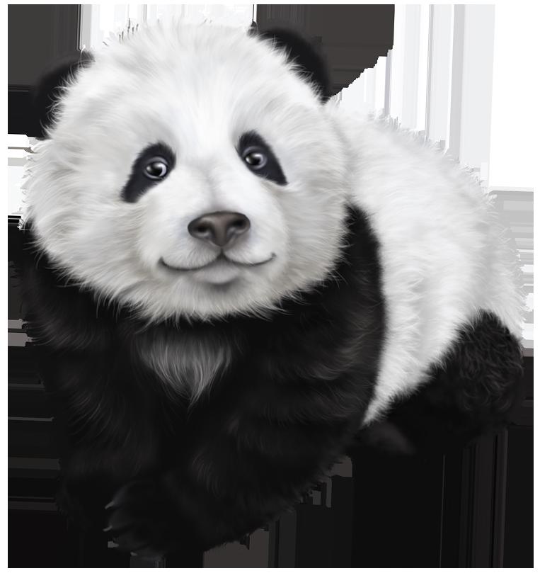 Panda HD PNG - 118909