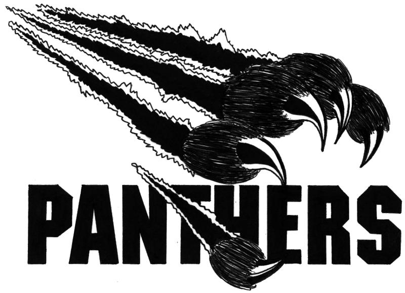 Panther PNG - 8093