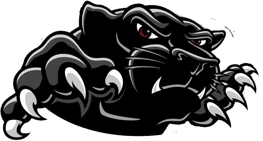 Panther PNG - 8079