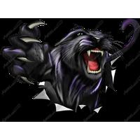 Panther PNG - 8080