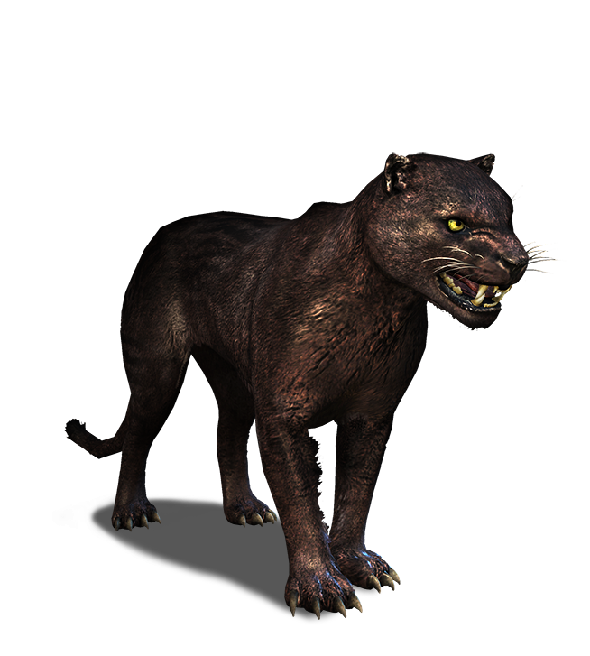 Panther PNG - 8090