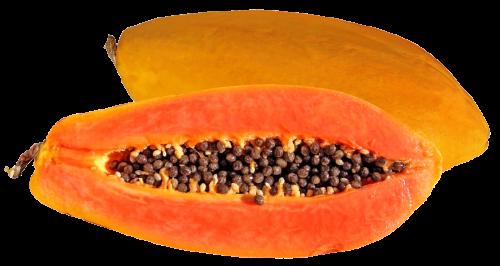 Papaya PNG - 23532