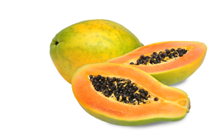 Papaya PNG - 23541