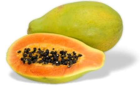 Papaya PNG - 23543