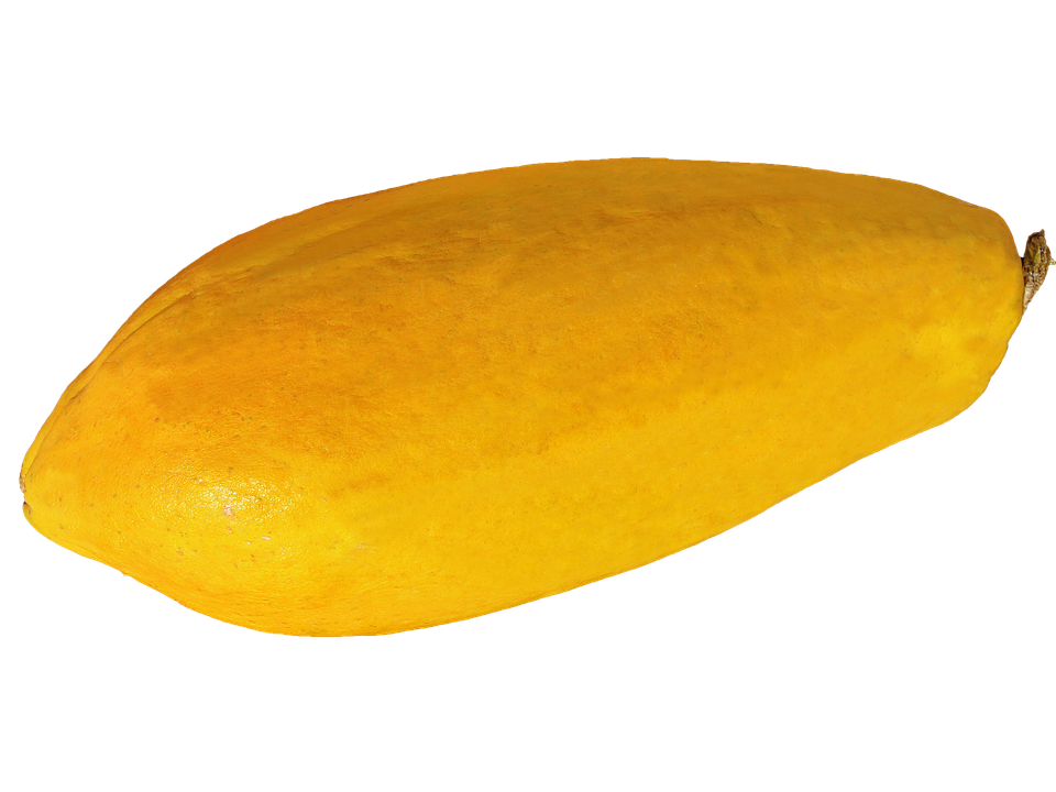 Papaya PNG - 23538