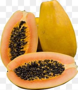 Papaya PNG - 23539