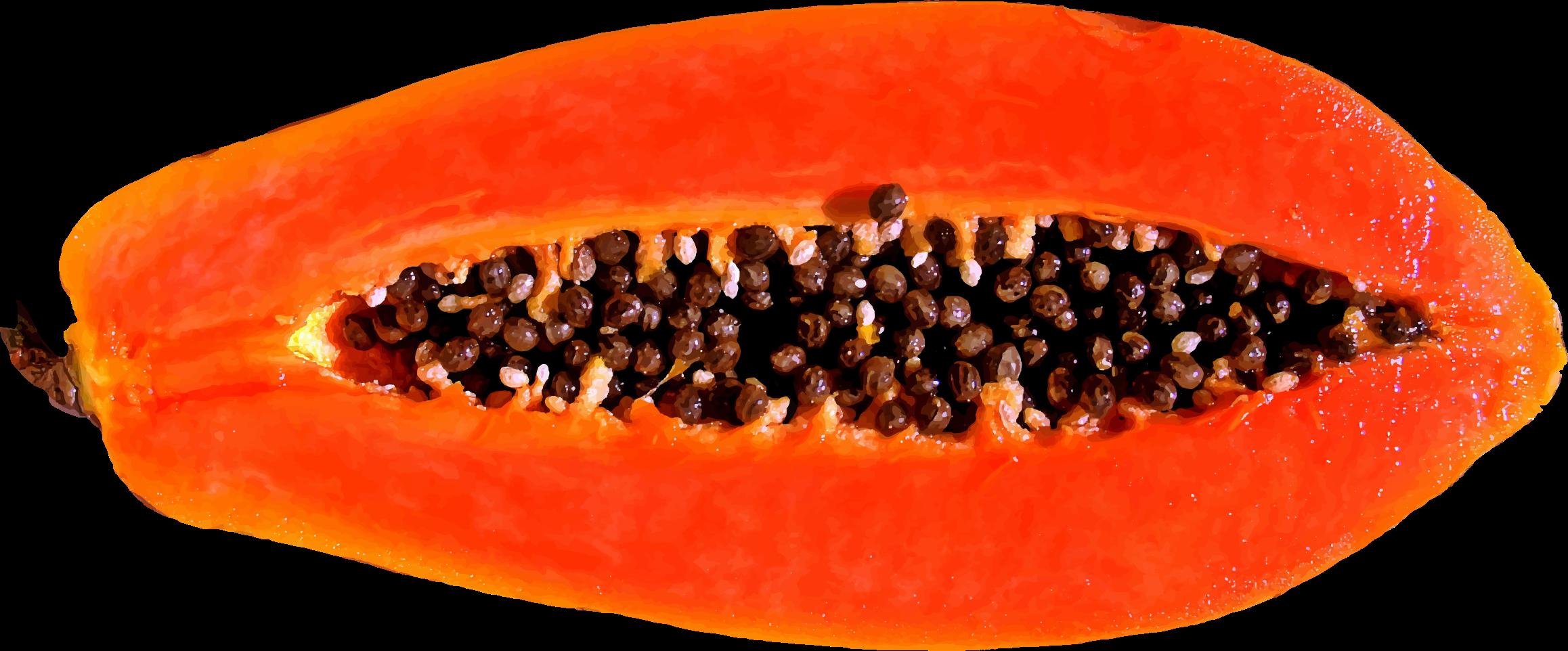 Papaya PNG - 23537