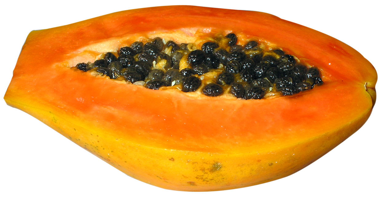 Papaya PNG - 23546