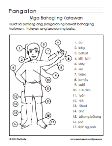 Parts Of The Body For Kids PNG Tagalog - 59280