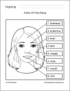 Parts Of The Body For Kids PNG Tagalog - 59294