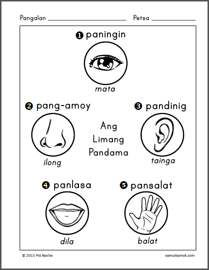 Parts Of The Body For Kids PNG Tagalog - 59284