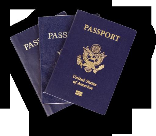 Passport HD PNG - 92005