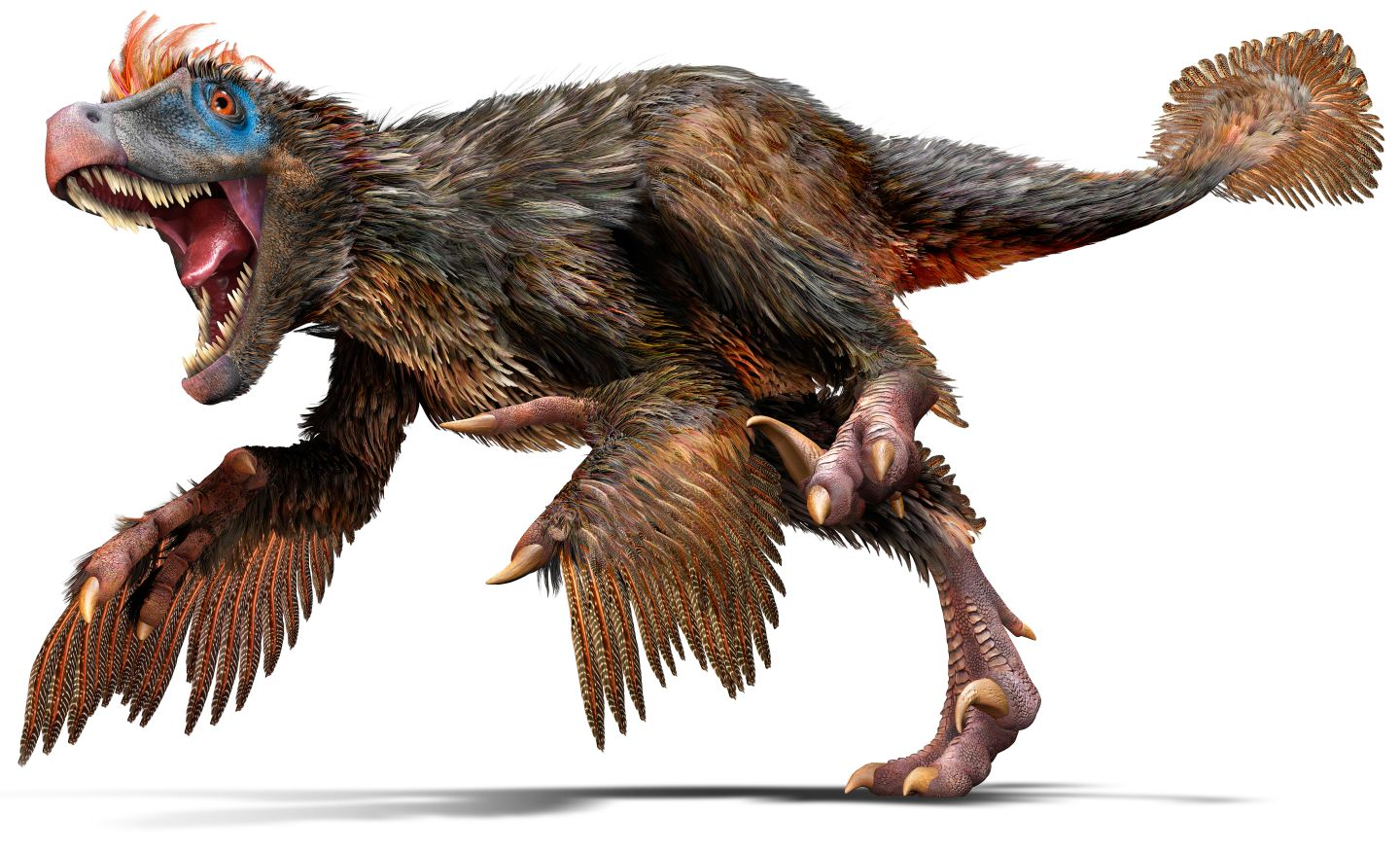 Pasted image1440x875 1.45 MB - Dinosaur PNG