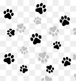 black gray paw texture composition - Paw PNG HD