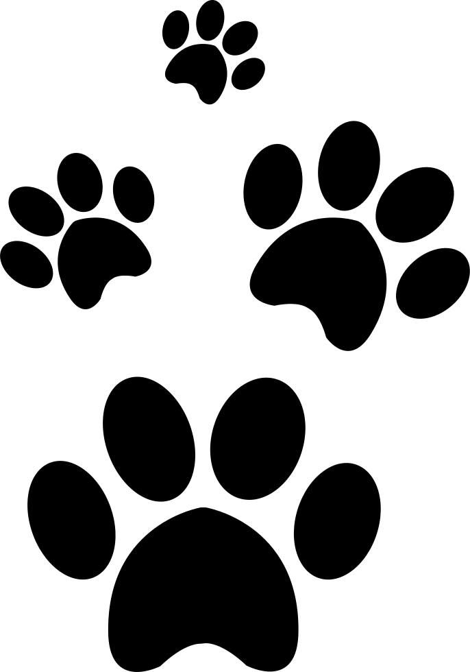 png file svg PlusPng.com  - Paw PNG HD