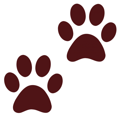animals · paw prints