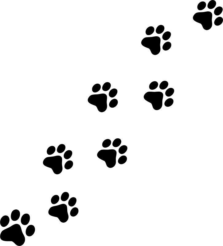 dog print clipart dog paw print clip art free clipartandscrap clipartpost  history clipart - Paw Print PNG HD