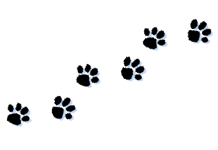 Paw-print-tattoos-on-dog-paw-prints-scroll-clipart-6.png - Paw Print PNG HD