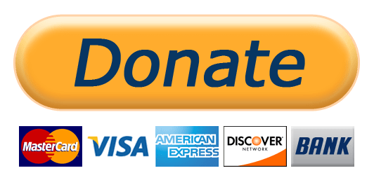 Paypal Donate Button PNG-PlusPNG.com-532 - Paypal Donate Button PNG