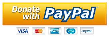 Paypal Donate Button PNG - 12677