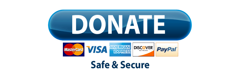 paypal-donate-button - Paypal Donate Button PNG