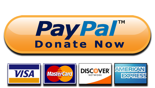 PayPal Donate Button High-Quality PNG - Paypal Donate Button PNG