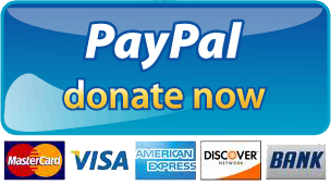 PayPal Donate Button PNG Picture - Paypal Donate Button PNG