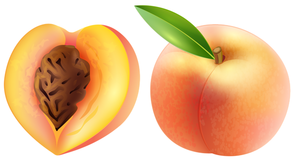 Peach HD PNG - 91160