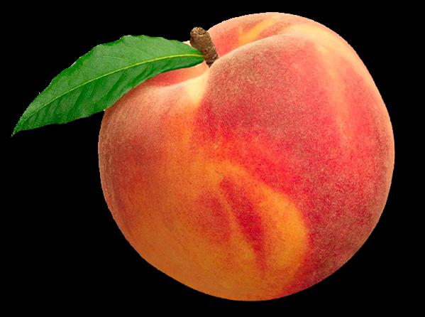 Transparent Peach Png image #41707 - Peach PNG