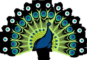 Peacock HD PNG - 95867