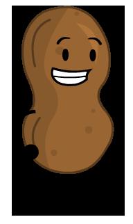 Peanut PNG - 11638