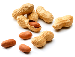 Some Unexpected Sources of Peanut - Peanut PNG