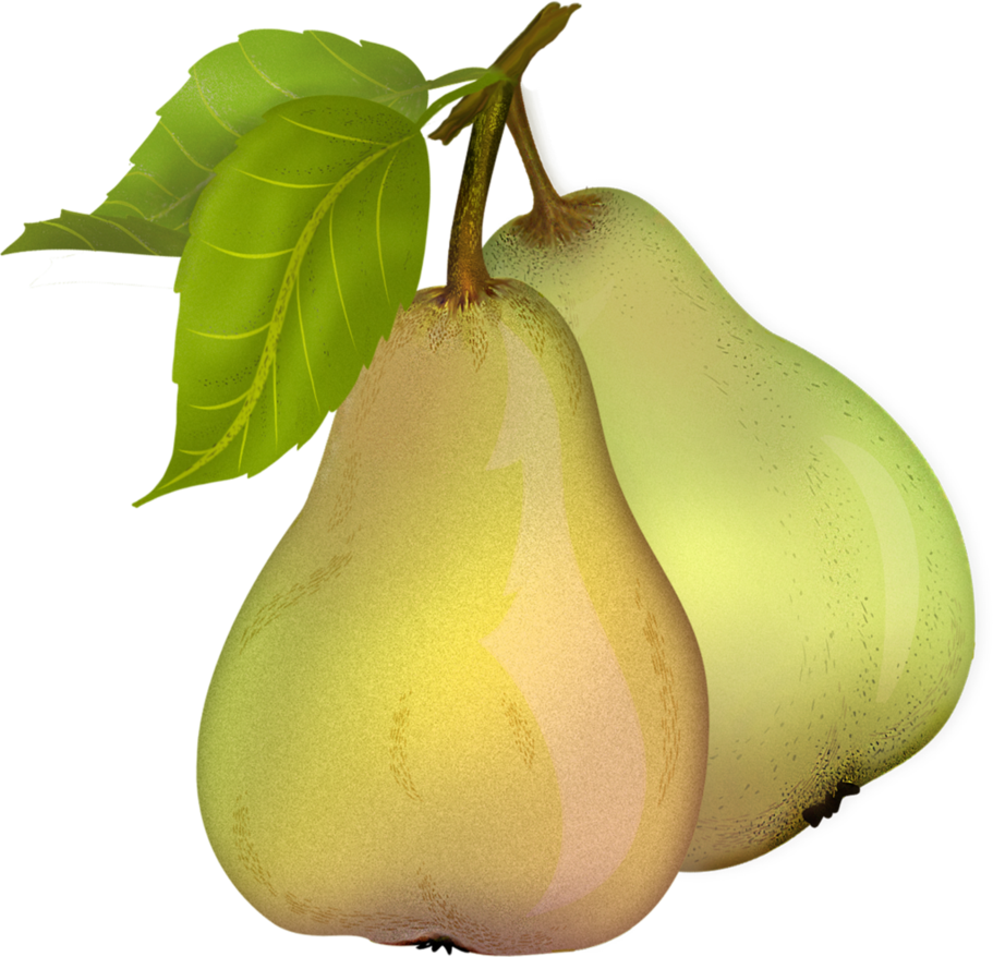 Pear 10 by roula33 PlusPng.com  - Pear HD PNG
