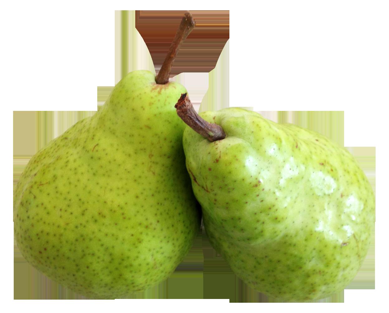 Pear PNG-PlusPNG pluspng.com-1248 - Pear PNG - Pear HD PNG