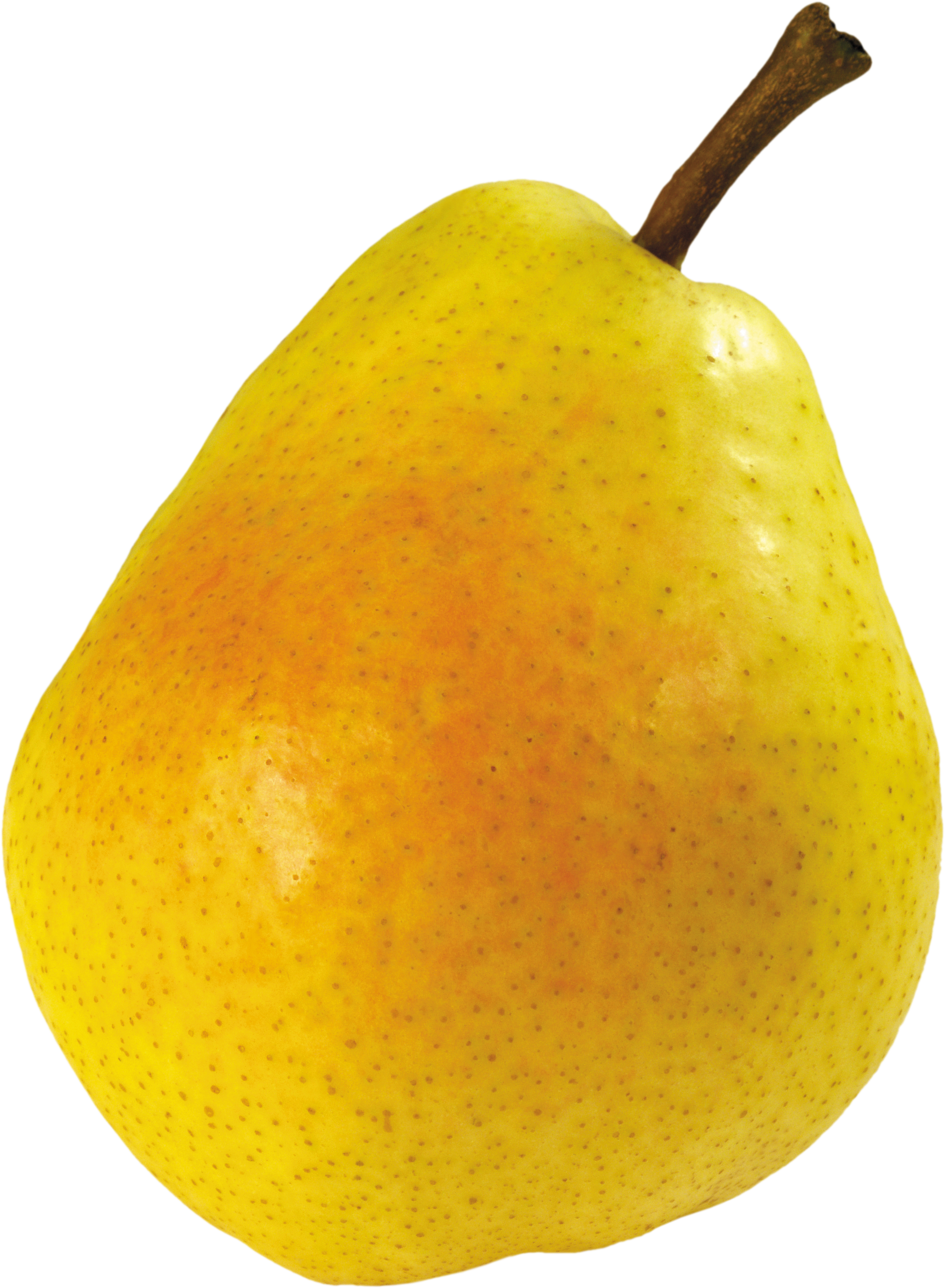 Ripe pear PNG image - Pear HD PNG