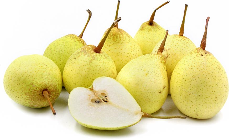 Yali Pears - Pear HD PNG