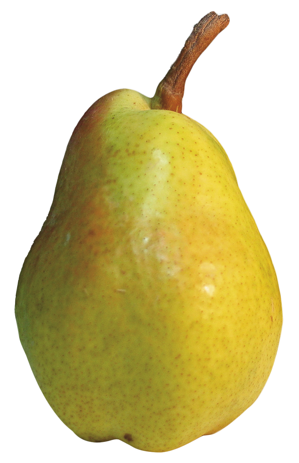 Pear PNG - 8920