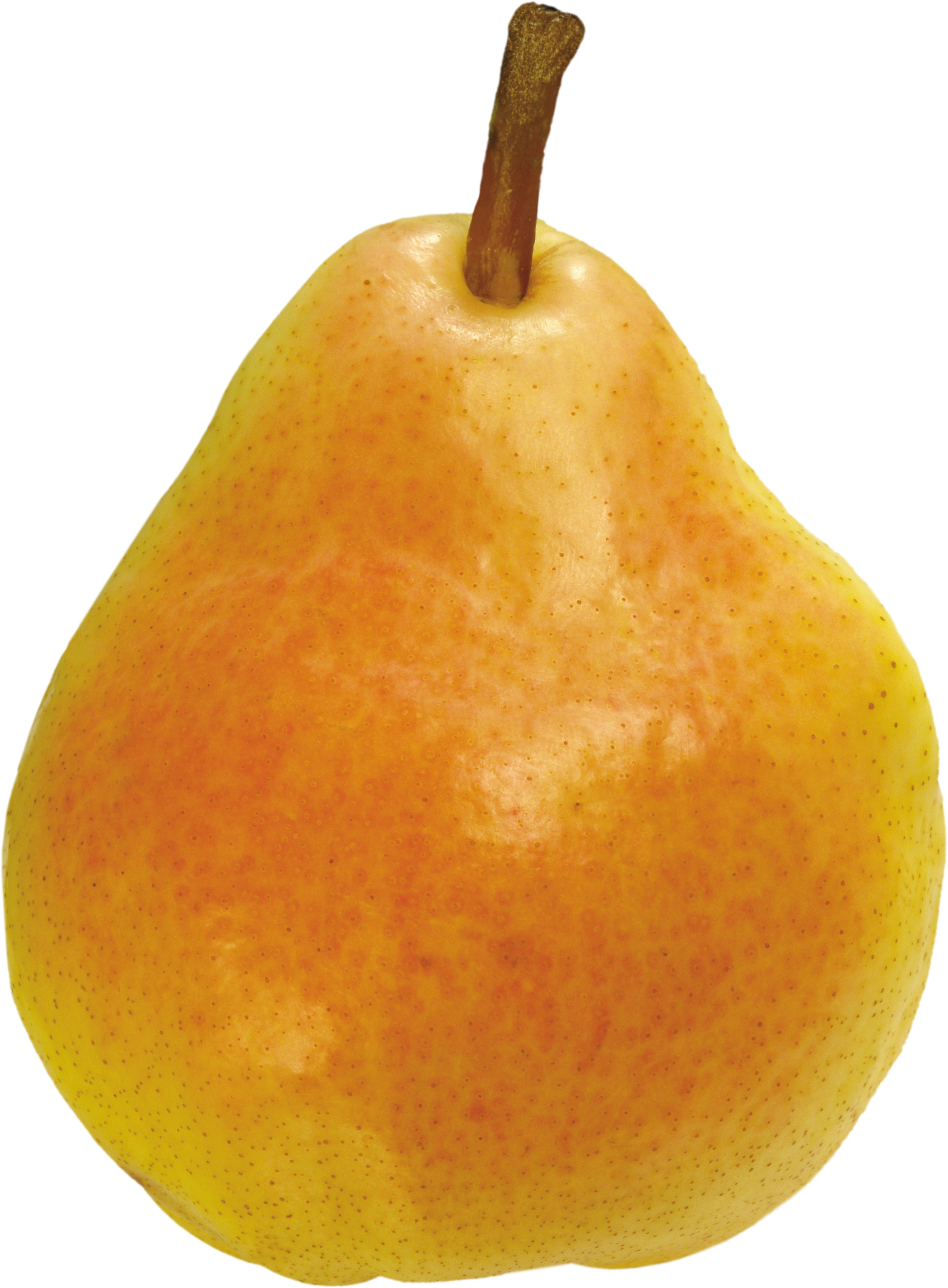 Pear PNG - 8921