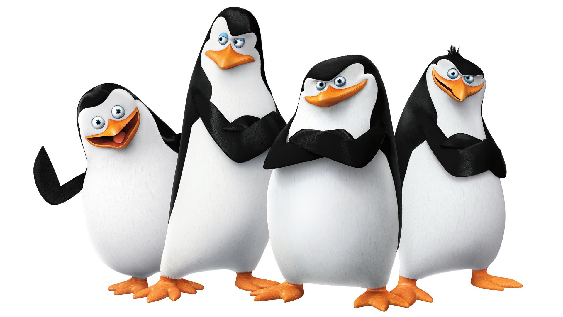 Penguin HD PNG - 92448