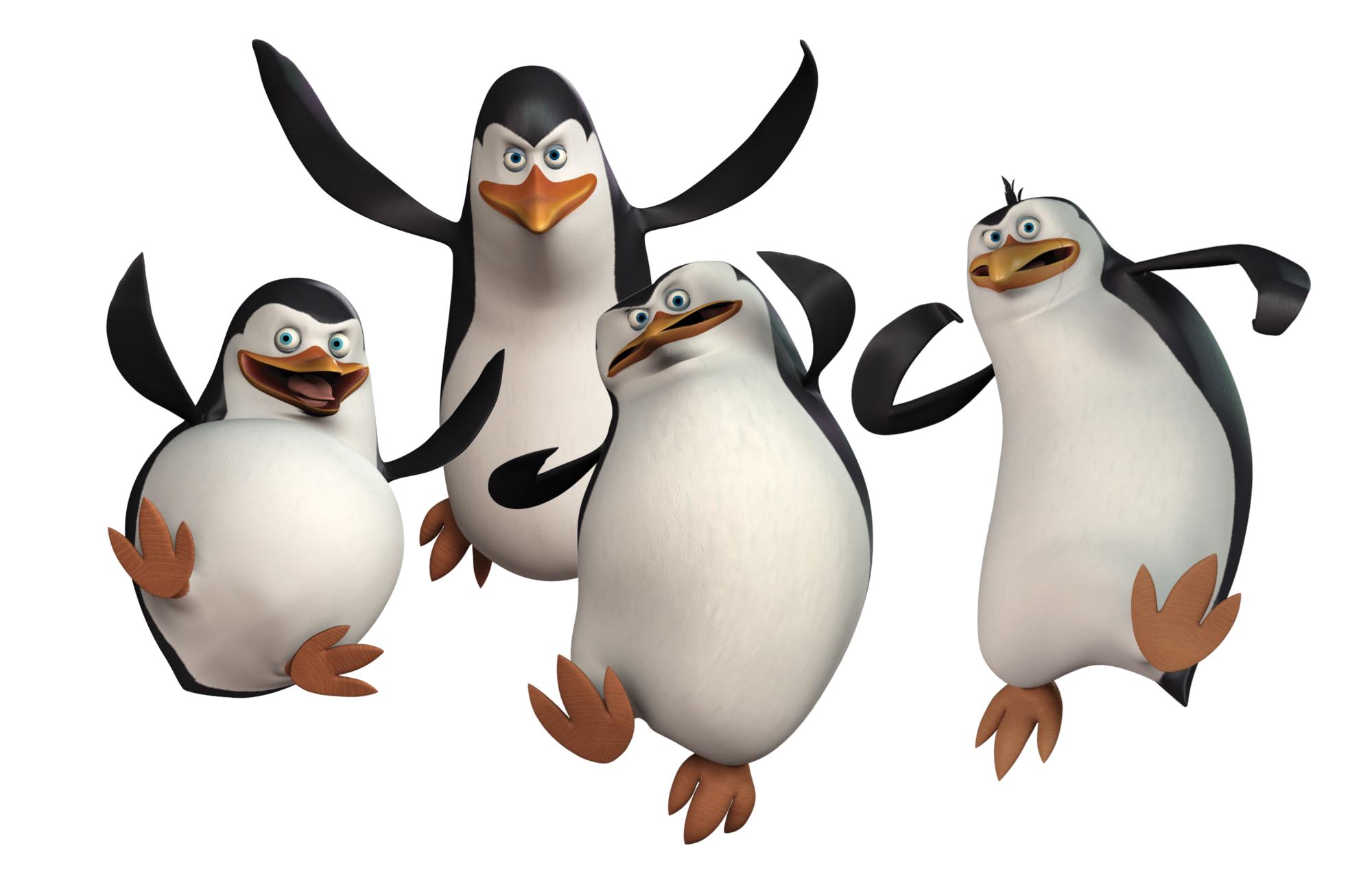 Penguin PNG - 1215
