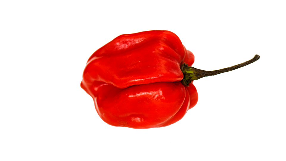 Red Pepper Pepper Vegetable Food Fresh Vegetarian - Pepper HD PNG
