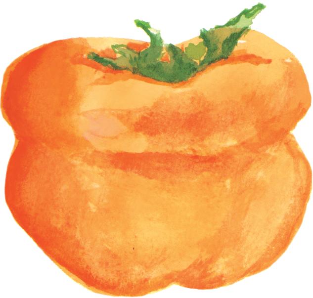 File:柿子persimmon.png - Persimmon PNG