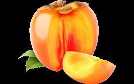 Persimmon - Persimmon PNG
