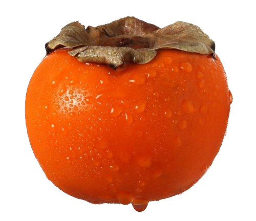 Persimmon png clipart - Persimmon PNG