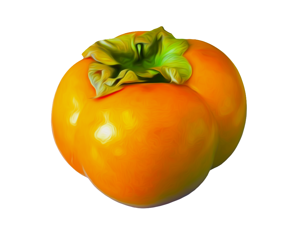 Persimmon PNG image - Persimmon PNG