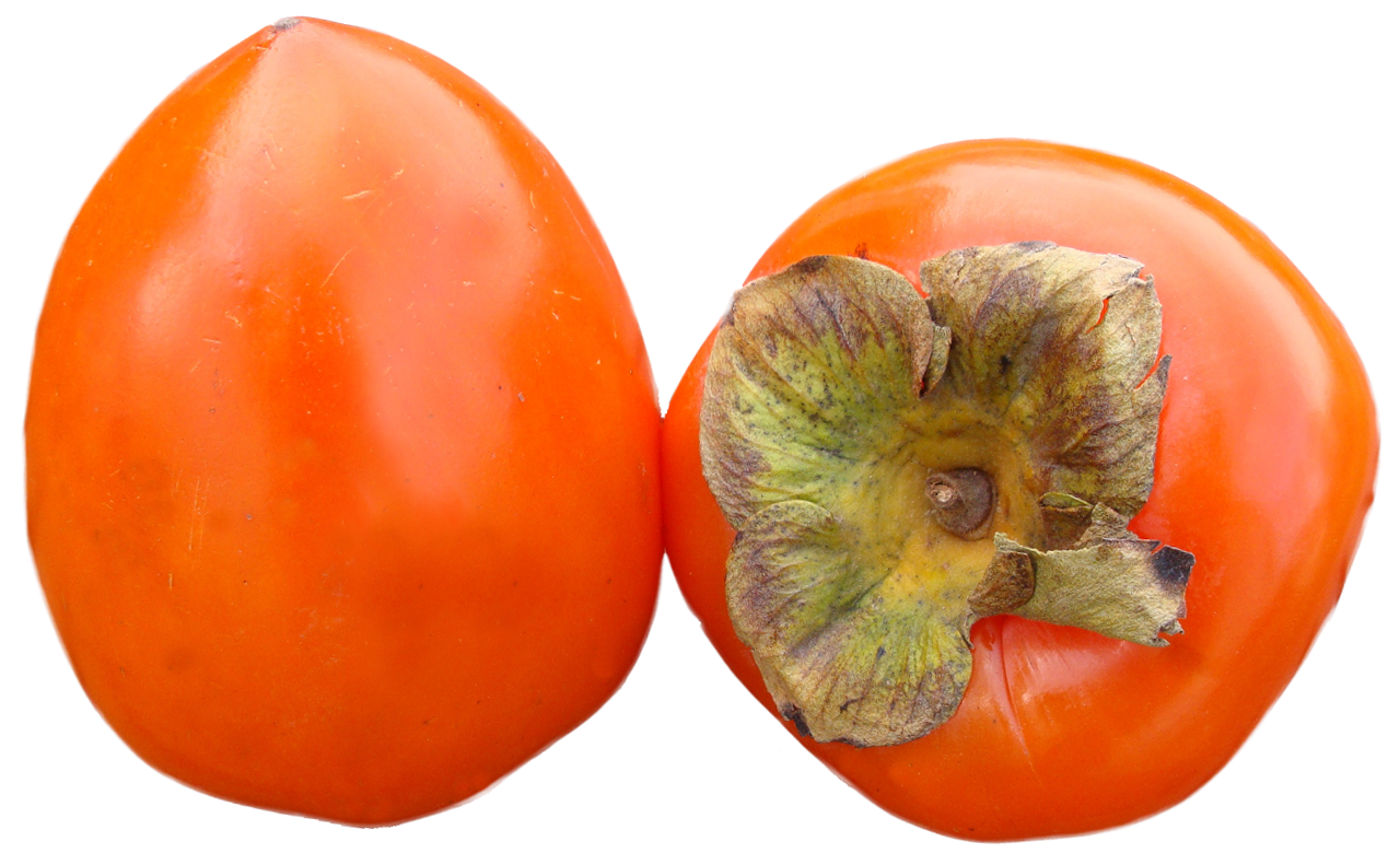 Persimmons PNG image - Persimmon PNG