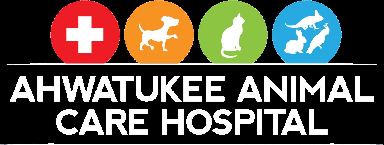 Pet Care PNG